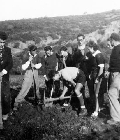 """<a href=""""/en/2936"""">Members of the Beitar youth movement, North Africa, 1940s</a>"""